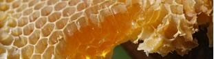 Steril honning